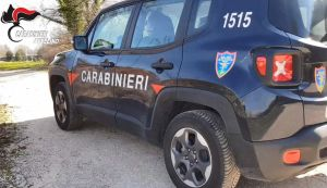 b_300_220_15593462_0___images_stories_Carabinieri8_av_cc1.jpg